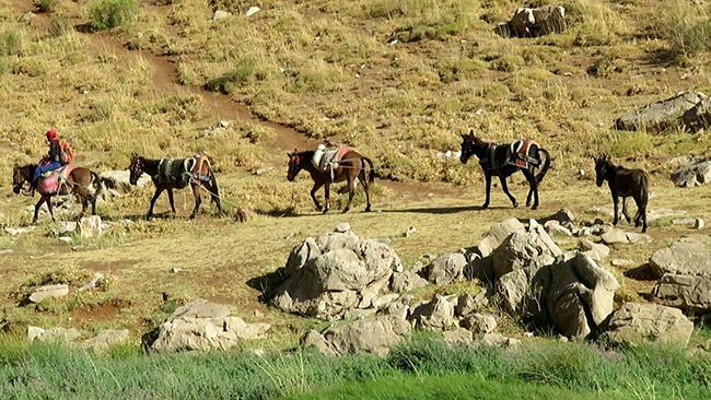 اکسپدیشن غار جوجار - 13970614 -  12